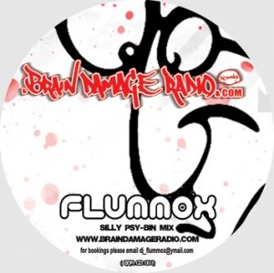 FLUMMOX - THE SILLY PSY BIN MIX 2010