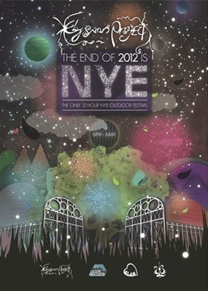 WINGNUT - ELYSIAN NYE 12/13 - (ACIDIC AREA) - 31st Dec 2012